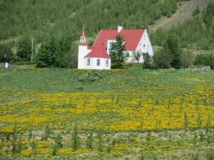 Akureyri to Snaffaeleness 034
