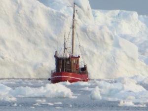 Glacier Sail-Camera 073