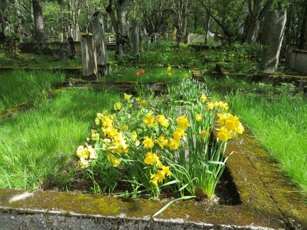 REYKJAVIK-Cemetery 032