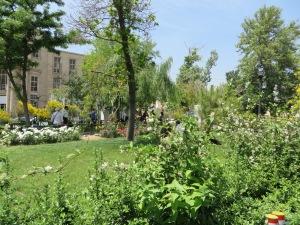 Lovely Park for relaxing