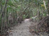 Costa Rica-Manuel Antonio-Hiking 08-09 030