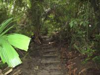 Costa Rica-Manuel Antonio-Hiking 08-09 035