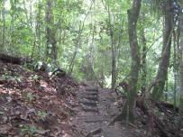 Costa Rica-Manuel Antonio-Hiking 08-09 053