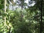 Costa Rica-Manuel Antonio-Ziplining 08-09 011