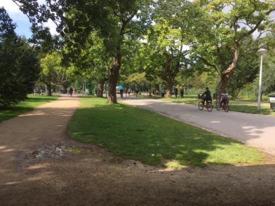 Voldek park